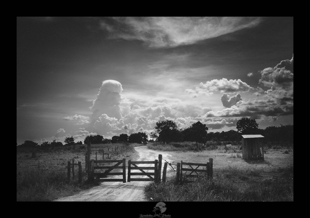 remicit photo, photo of the day, image of the day, photo du jour, image du jour, photo noir et blanc, photo pantanal brésil, brésil noir et blanc, black and white brazil, french photographer, landscape photographer, photographe français, photo de voyage brésil, photo paysage brésil, photo nuages, belle photo, idée déco, idée cadeau