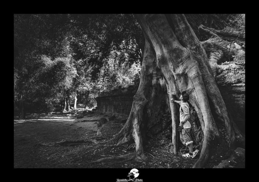 remicito photo, image du jour, photo du jour, photo of the day, photo noir et blanc arbre, photo noir et blanc temples angkor, black and white photography angkor cambodia, photo arbre cambodge, idée cadeau, meilleur photographe français, best french photographer