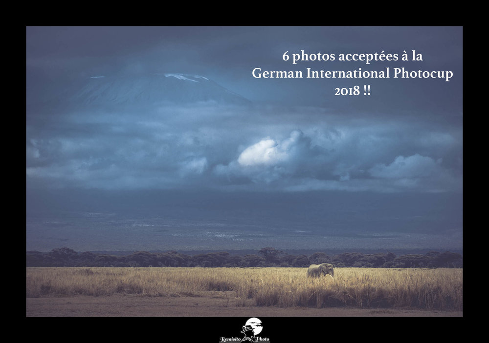 remicito photo, remicito, salon photo international, photo contest, german international dvh photocup 2018, photo voyage Kenya amboseli volcan elephant, photographe français