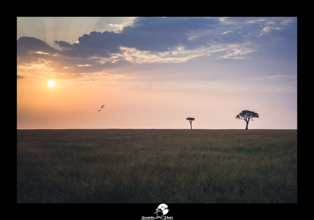 Remicito photo, remicito photo rémi lacombe photogrpahe paris, belle photo idée cadeau coucher de soleil, photo afrique kenya masai mara coucher de soleil