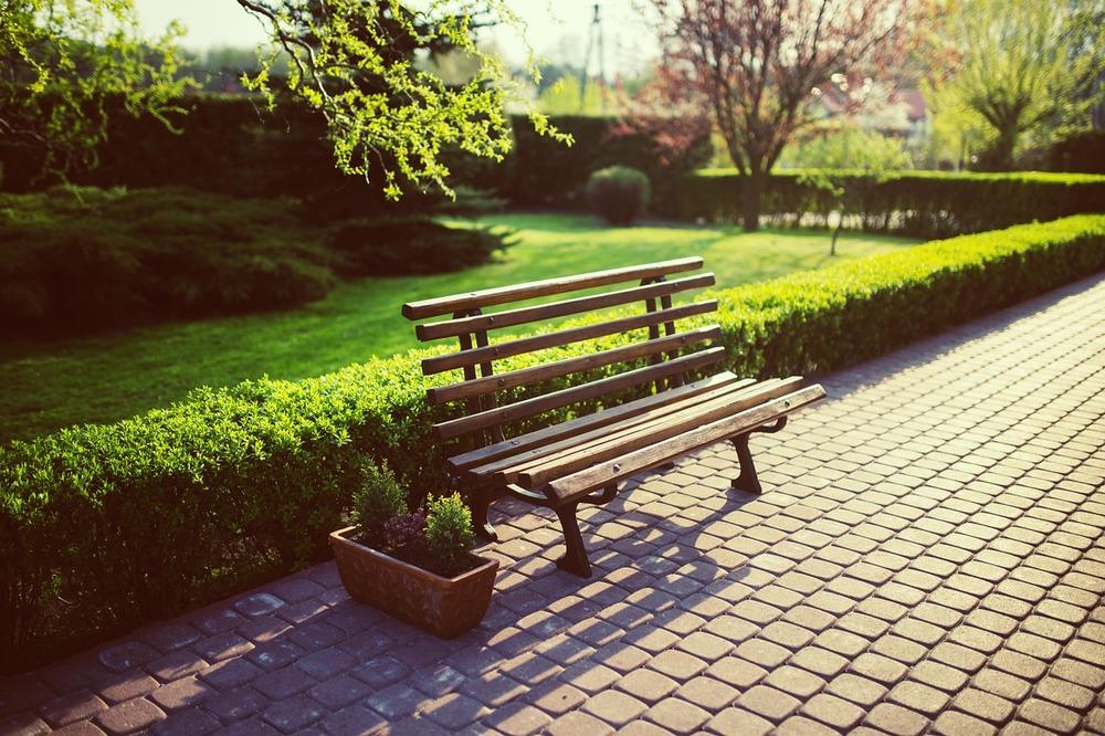 bench-791852_1280.jpg