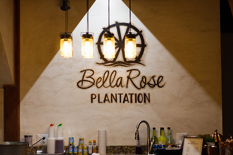 bella-rose-plantation-wedding-lynchburg-virginia-venue-reception-area