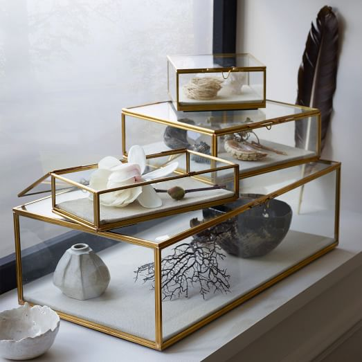 Glass Display Cases from West Elm