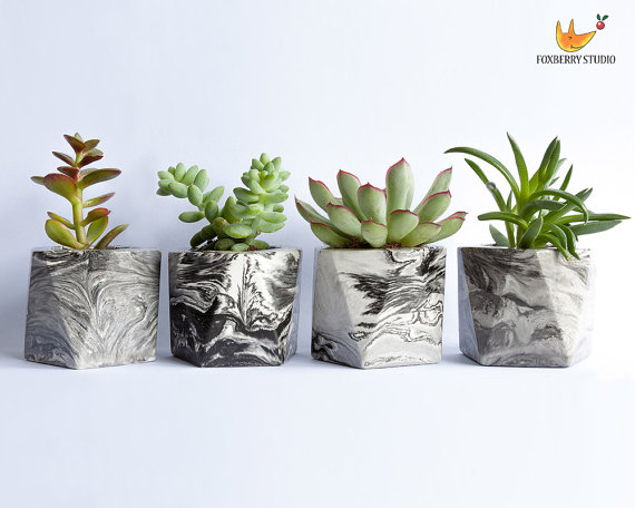Marbled Succulent Planters by Foxberrystudio