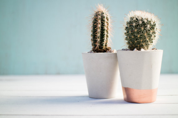 Light Rose Gold Planters by ConcreteAlphabet