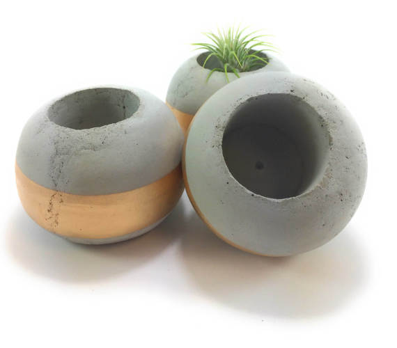Cement Succulent Planter by UCDesign