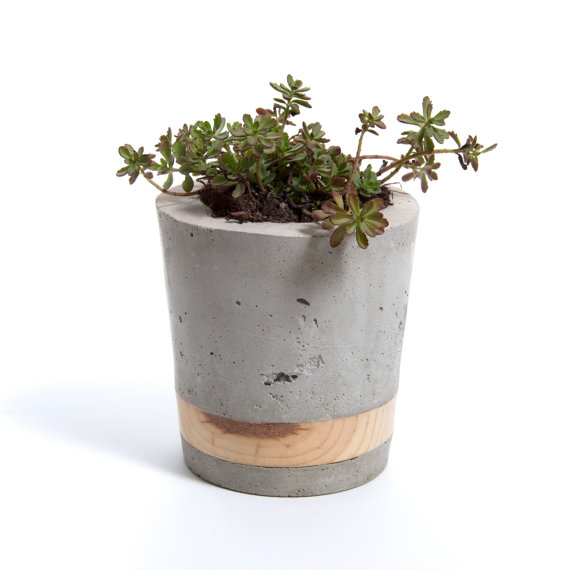 Cement Planter by WasatchCreative