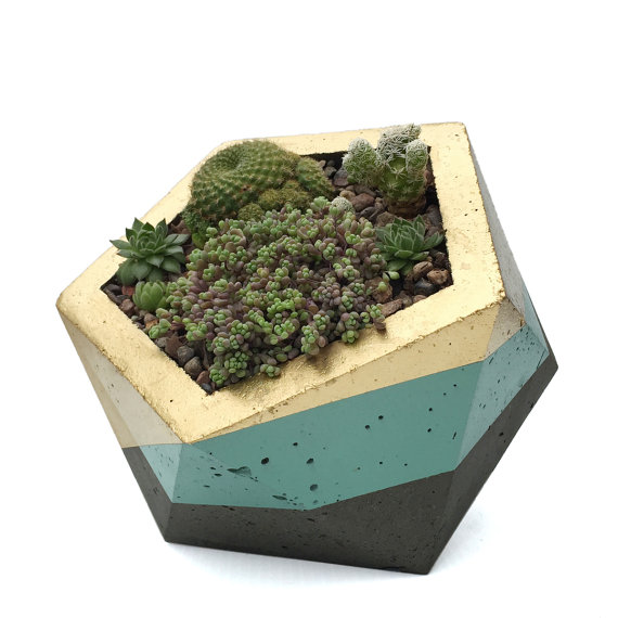Painted Cement Planter by HelloMadeGoods