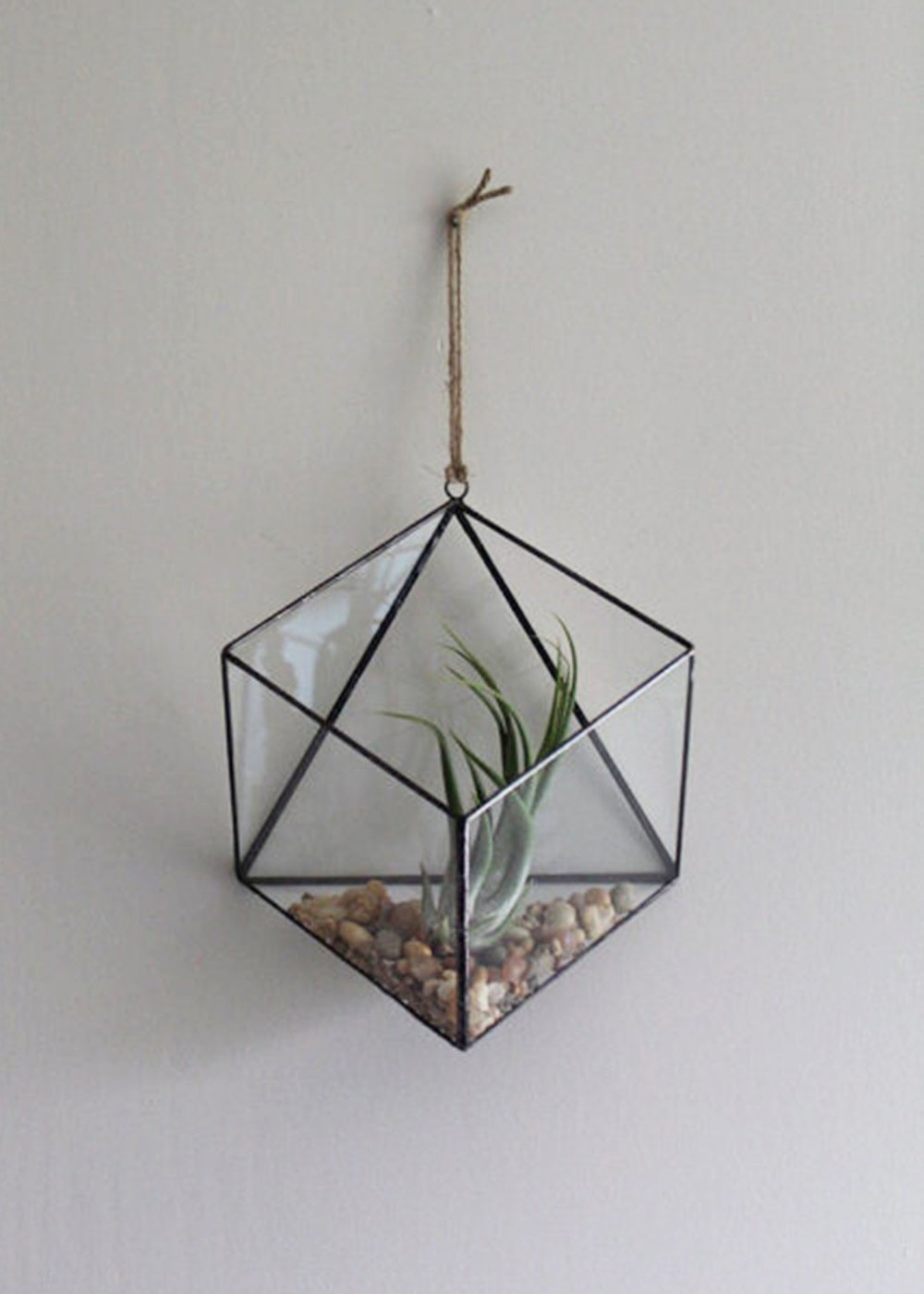 Large Hanging Terrarium by HaasDesignStudio