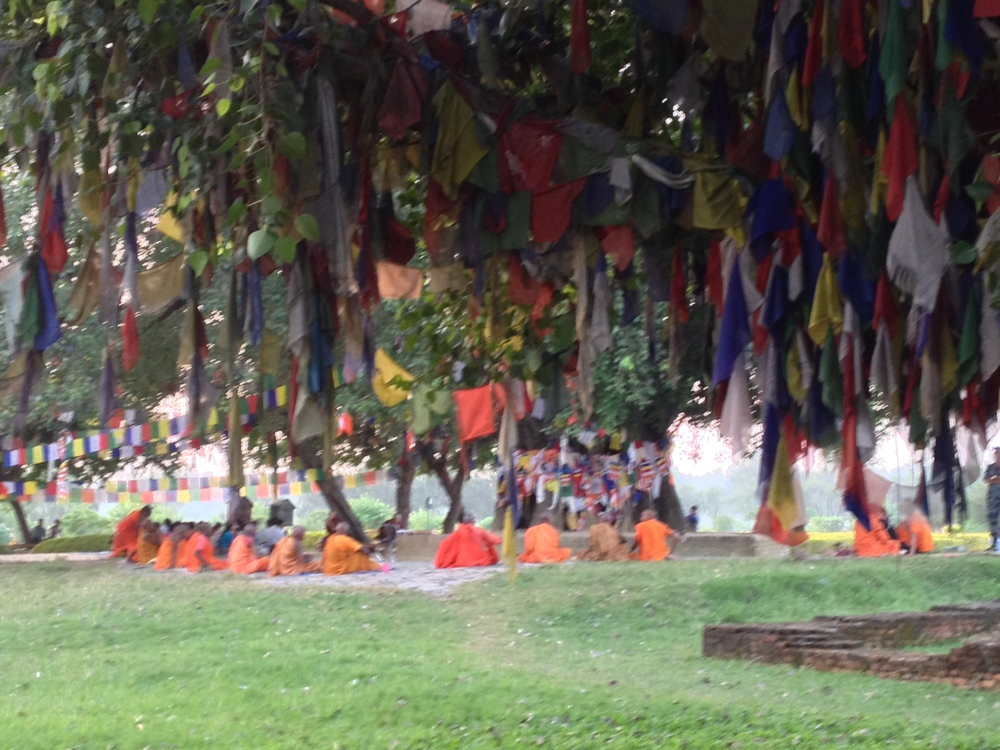 Bodhi tree with prayer flags Lumbini.JPG