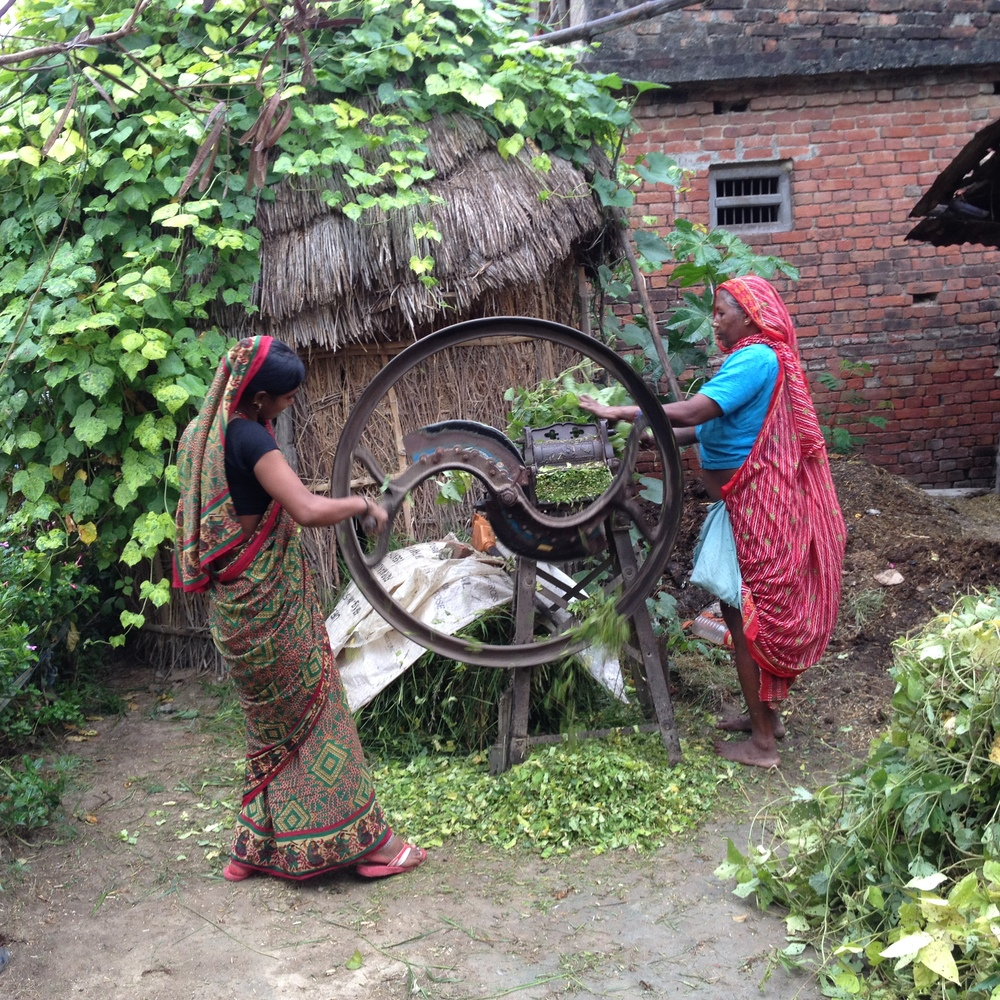 Ancient arts of village life Lumbini.JPG