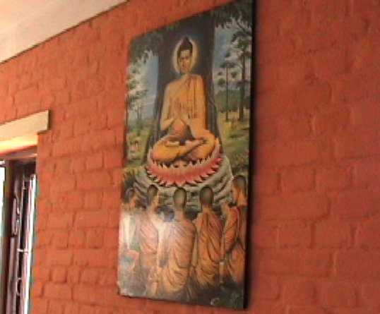 buddha in hostel kitchen.JPEG