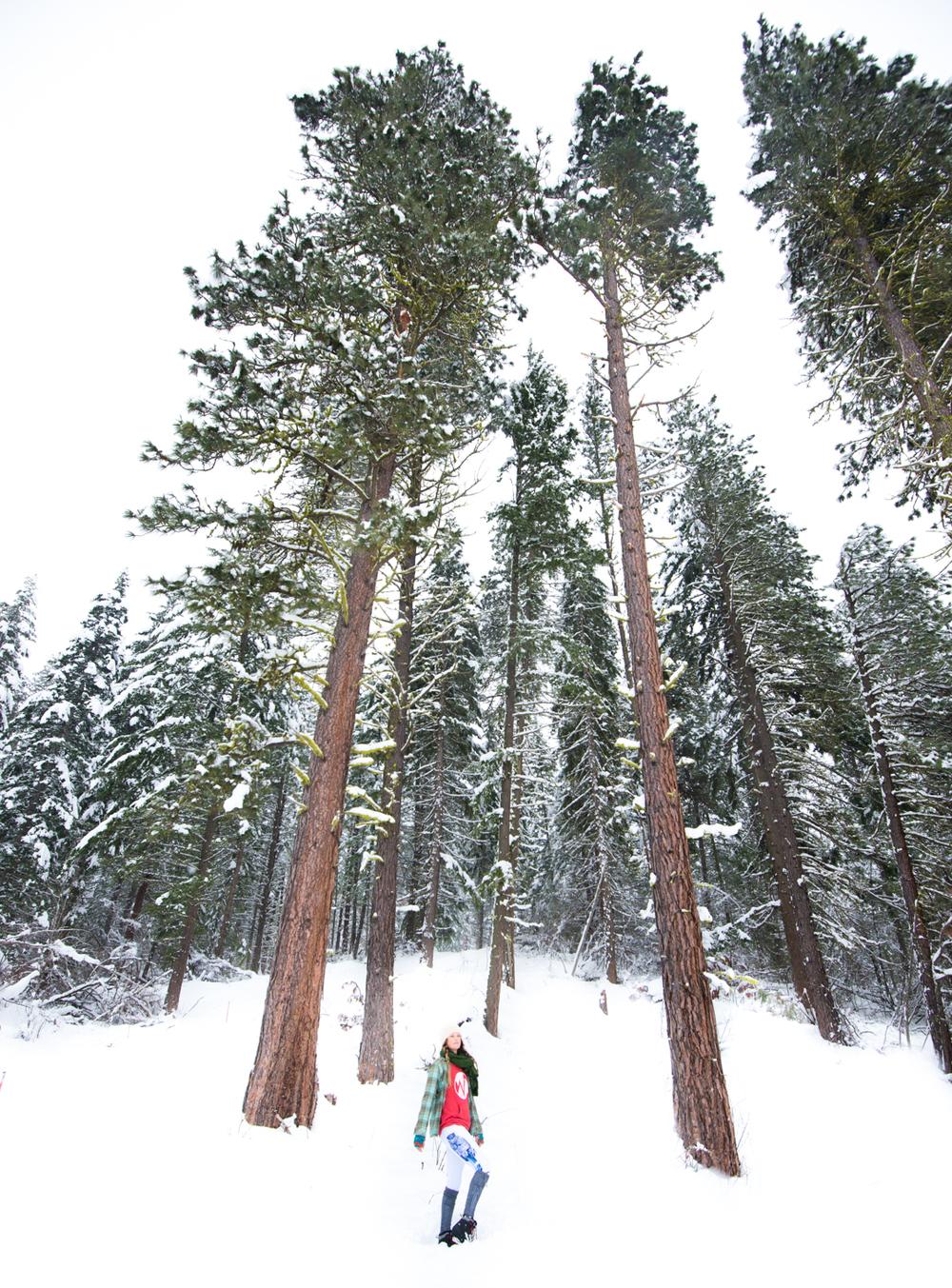 Hiking yoga leggings Leavenworth Washington