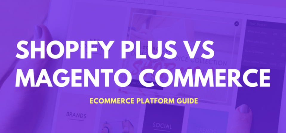 I co-authored a platform comparison guide, comparing two enterprise platforms: Magento Commerce (formerly Magento Enterprise) and Shopify Plus on ecommerceguide.com