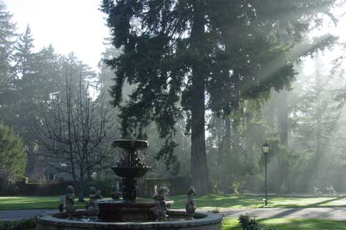 Here is the finished fountain, in the morning mist.