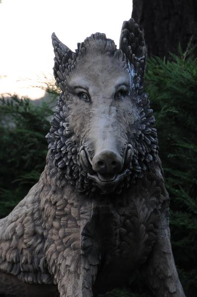 Wild Boar As Seen In Harry Potter.jpg