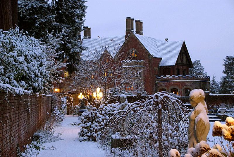 f_snowygarden.jpg