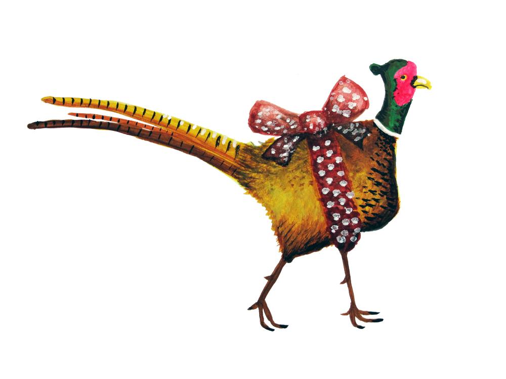 Birthday Pheasant  / watercolor / February 2016
