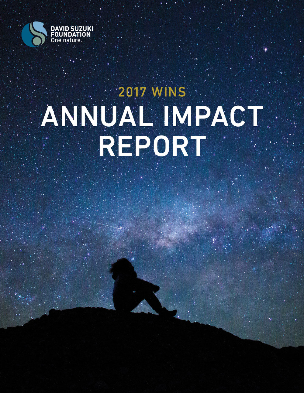 DSF_Annual-Impact_WEB.jpg