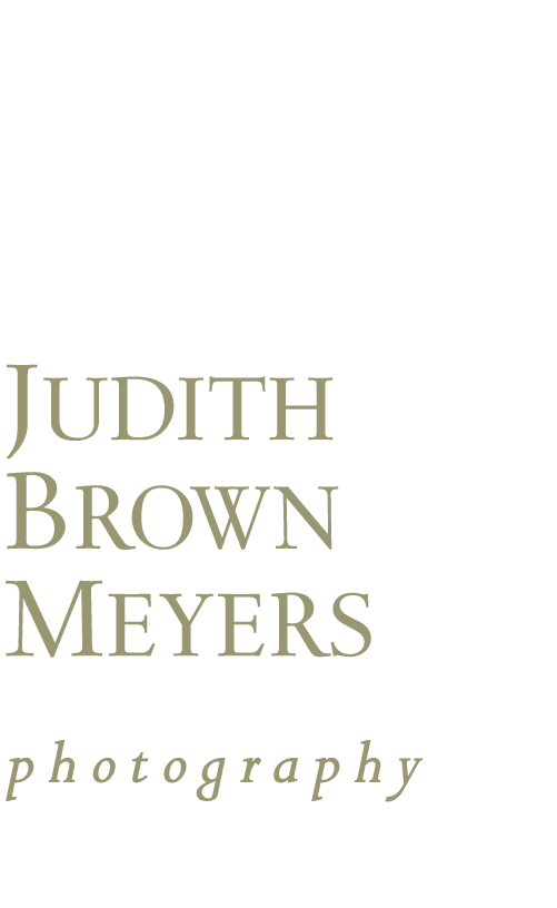 Judith Brown Meyers Photography