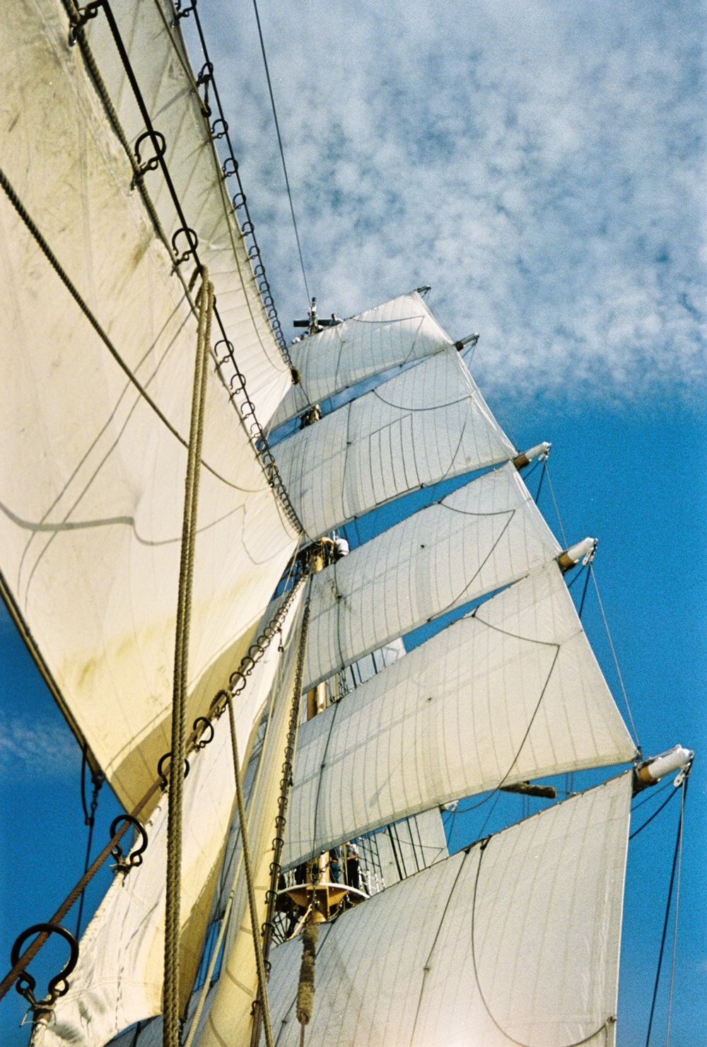 The Barque Eagle's sails. Photo by Tenley Lozano
