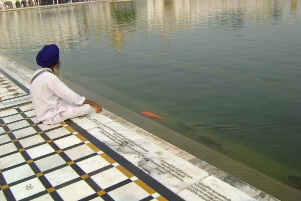 A man sits in front of the reflecting pool at the Golden Temple. Courtesy of Teresa Fazio
