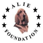 ALIE Foundation logo.jpg