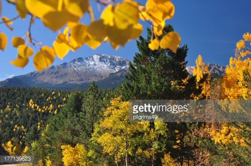 Photo by pilgrims49/iStock / Getty Images