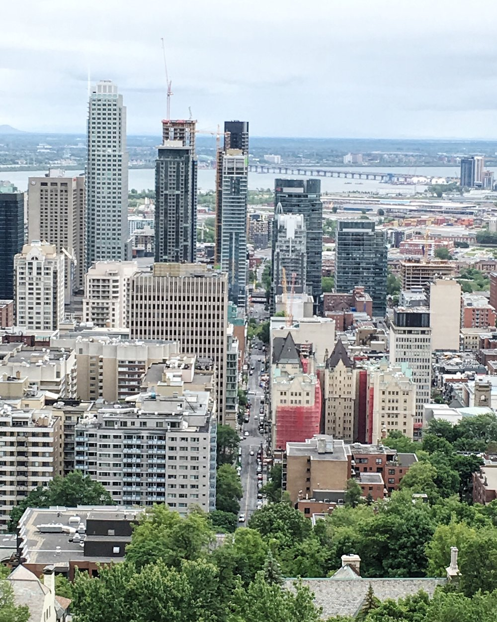 From Mont Royal