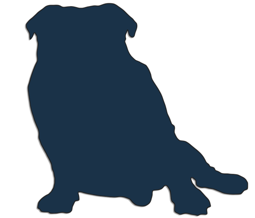 13110-Bulldog-sitting-white-background.png