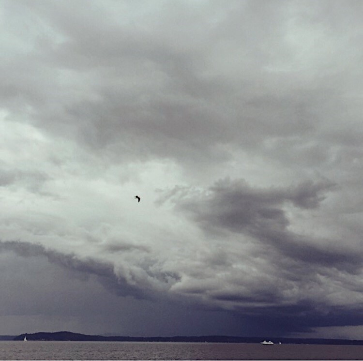 A Seattle stormy day…