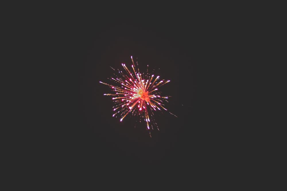 FREEDOM-6.jpg