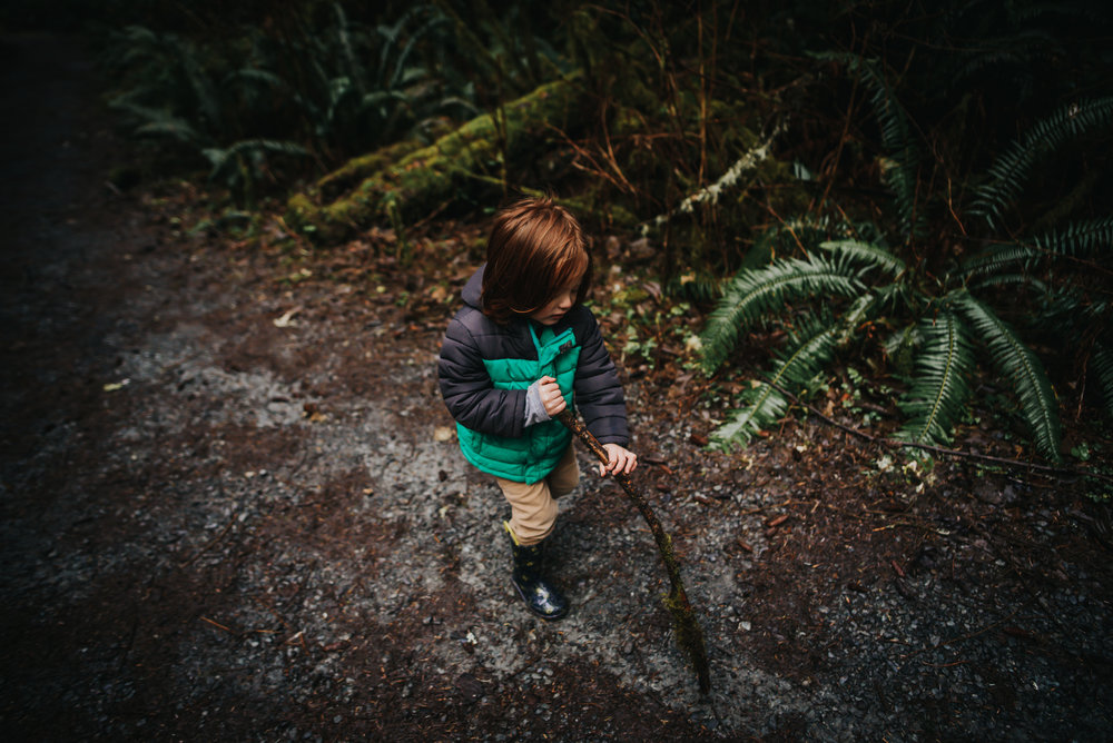Little boy walks with a stick during hike in Oregon forest in Oswald West State Park.