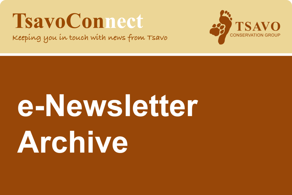 Catch up on the current and previous issues of tsavoconnect, our monthly e-newsletter. Subscribe here to receive future copies directly to your inbox.