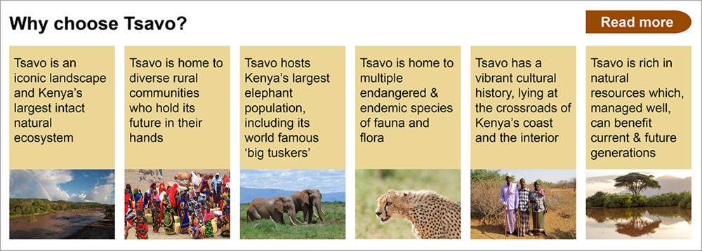 why choose tsavo?