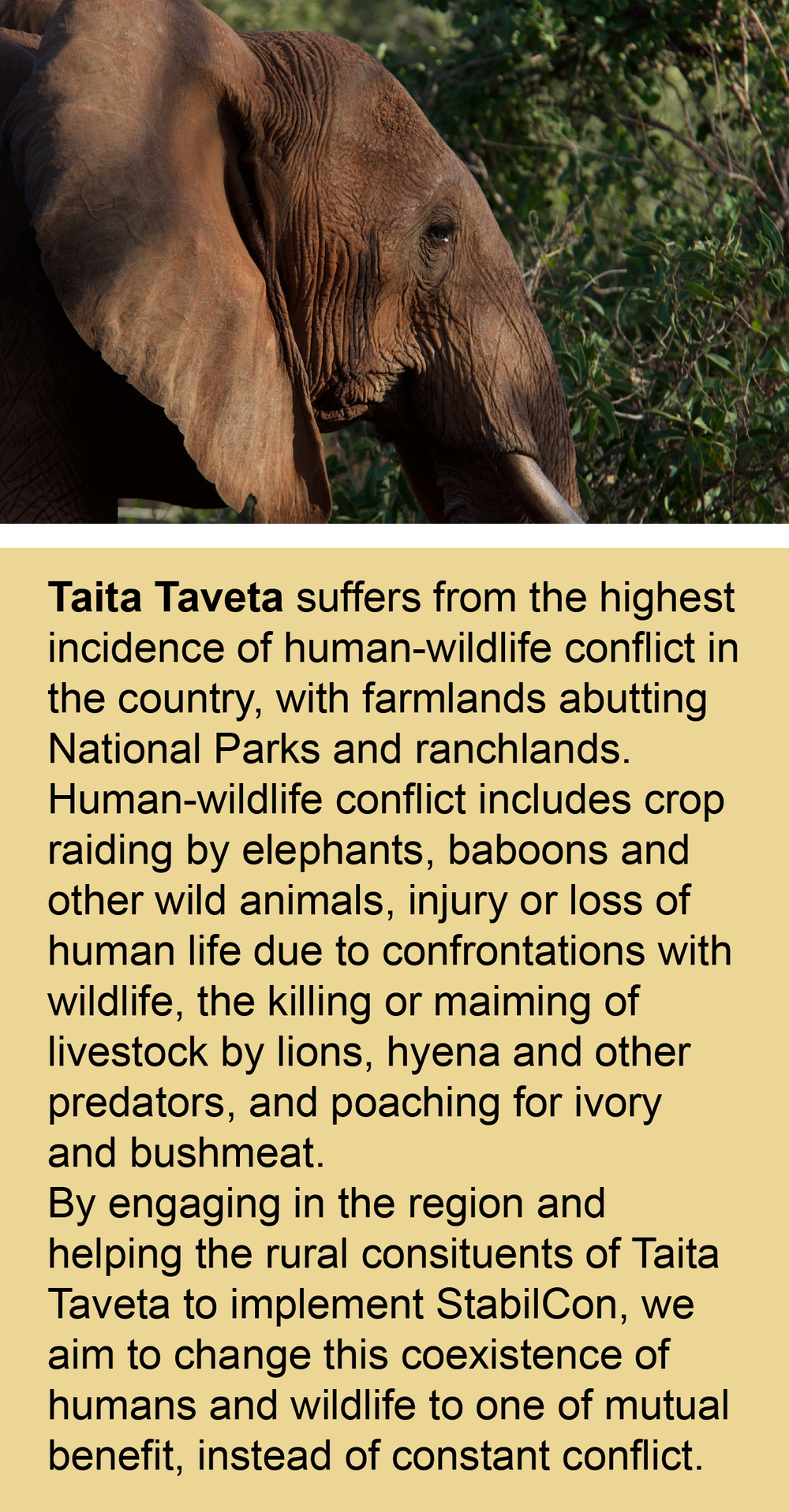 taita taveta environmental coordination initiative