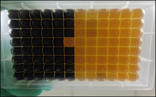 Positive shows black; Negative shows yellow/brown