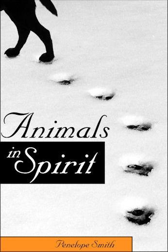 Animals-in-Spirit-animal-death-book-Penelope-Smith.jpg