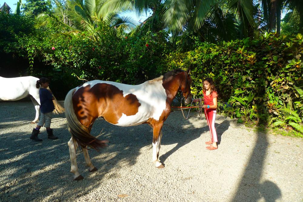 Pony Club Costa Rica