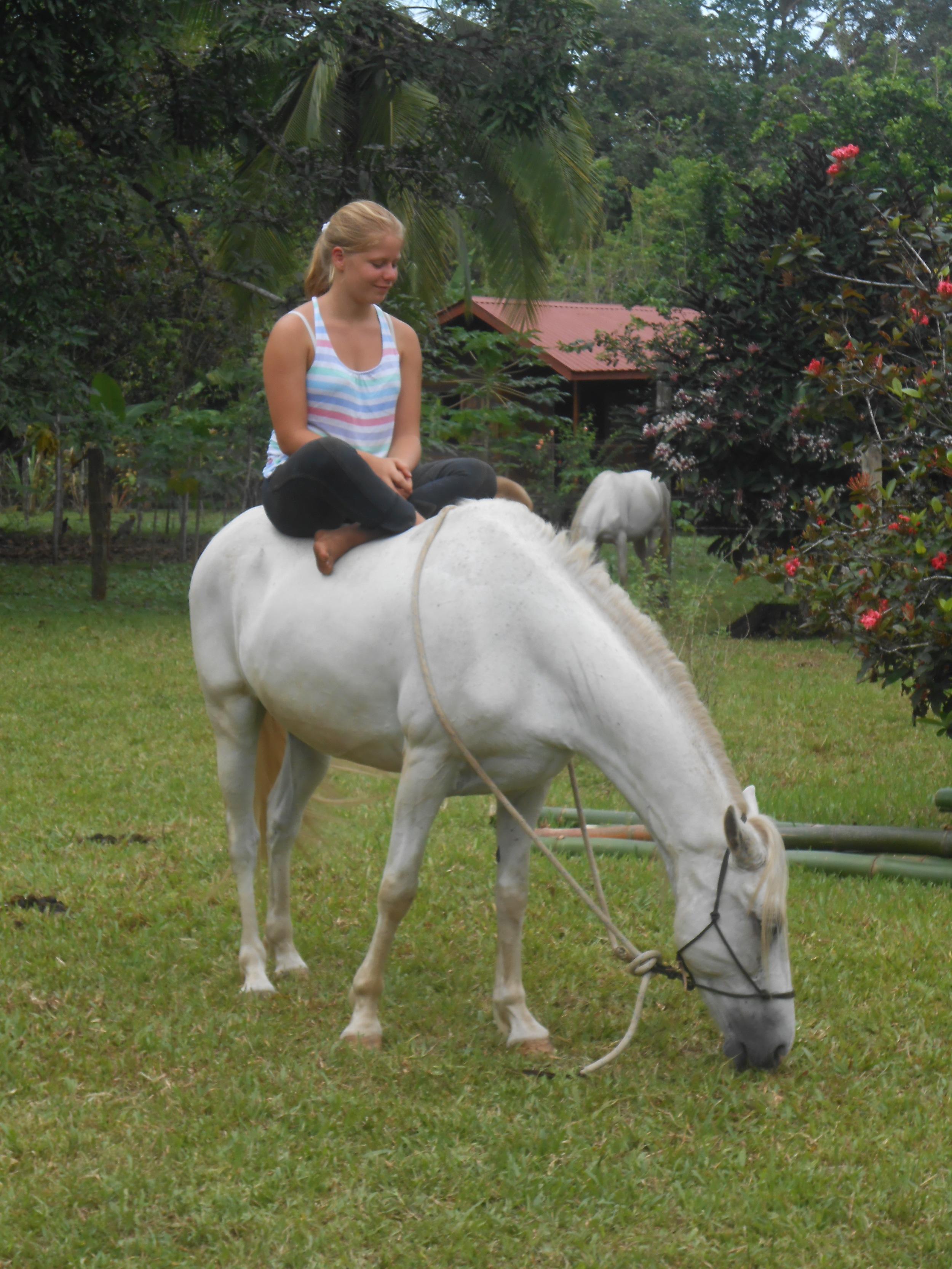 meditating on a horse