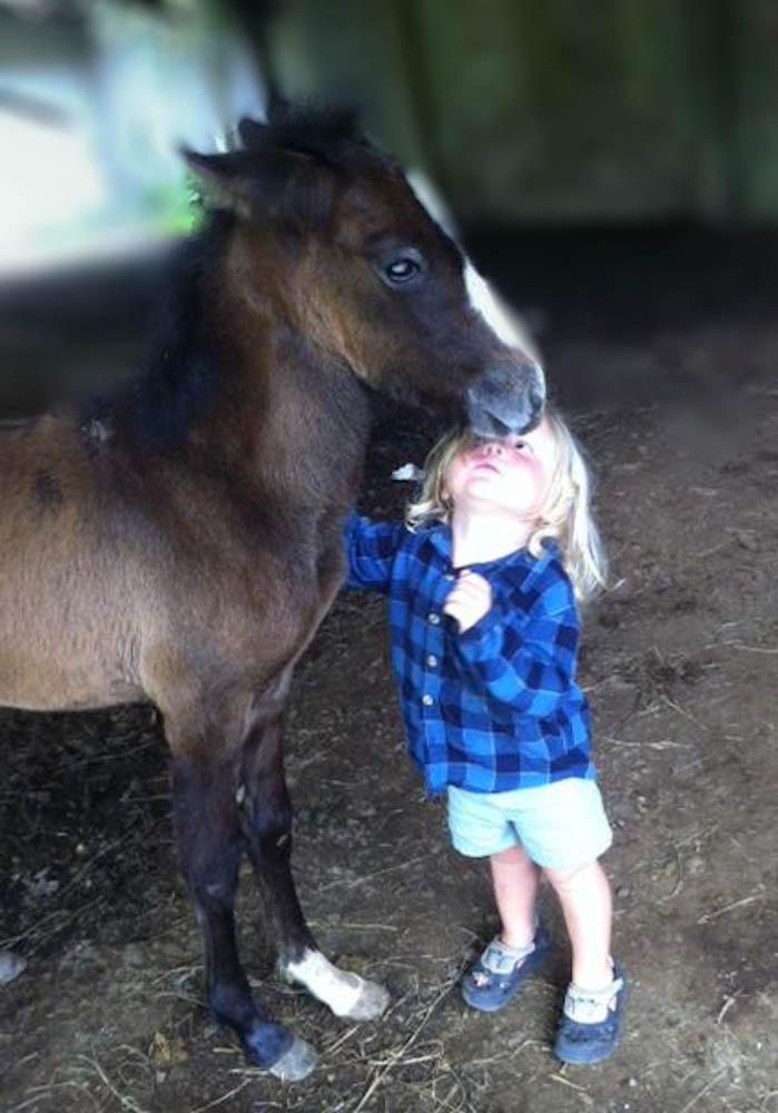 Micki the Foal Whisperer