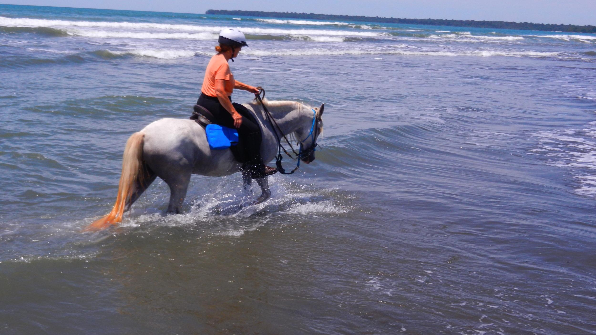 Horse riding Caribbean Sea
