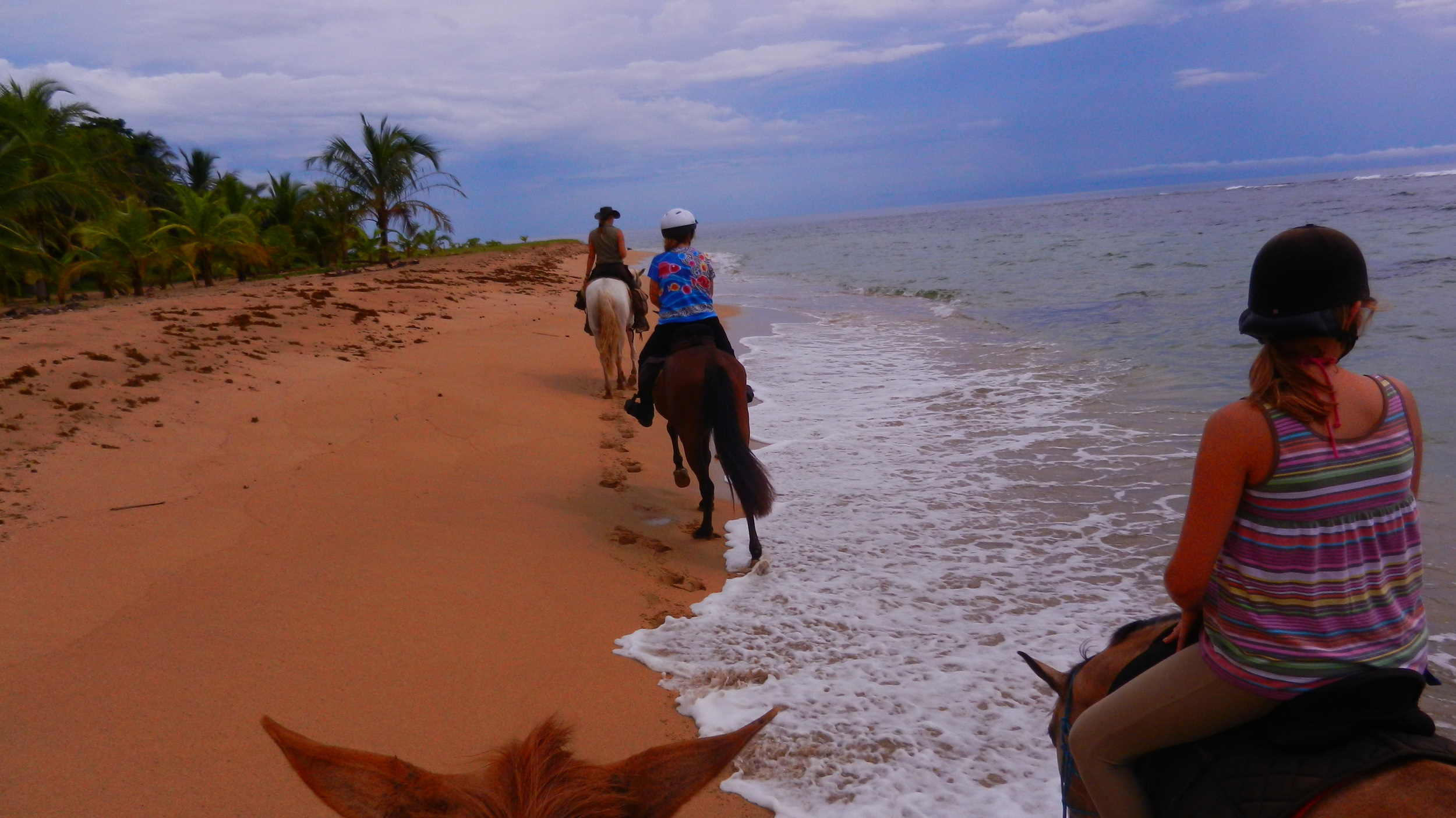 Punta Uva horse riding in Costa Rica