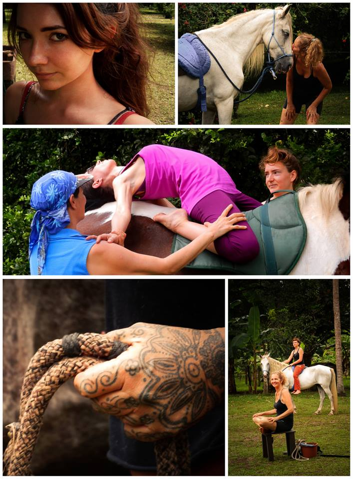 Yoga & Riding