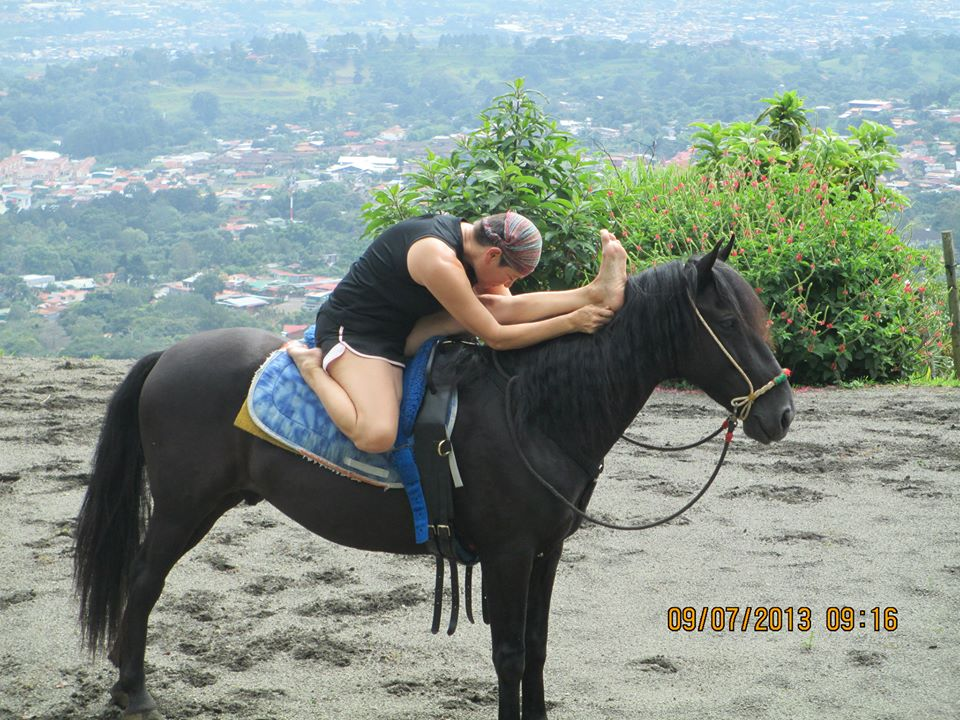 Yoga asanas with horses