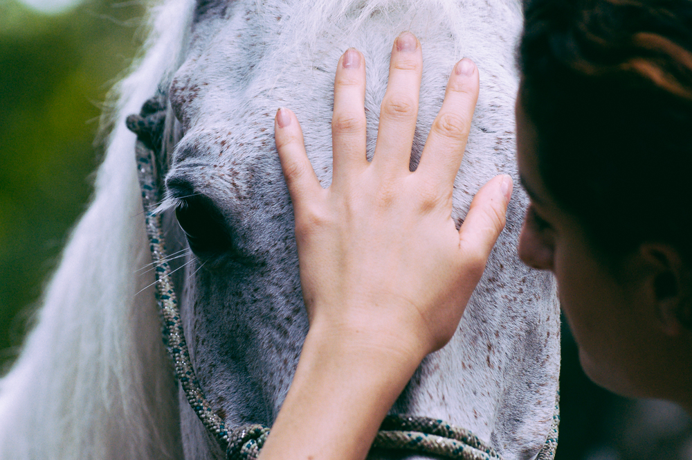 Connecting with horses.