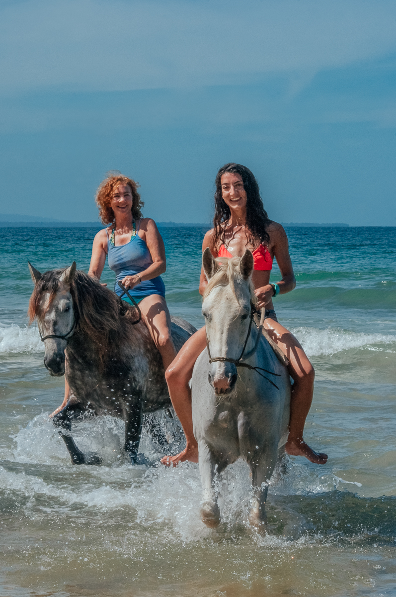 beach-horses-1-2.jpg