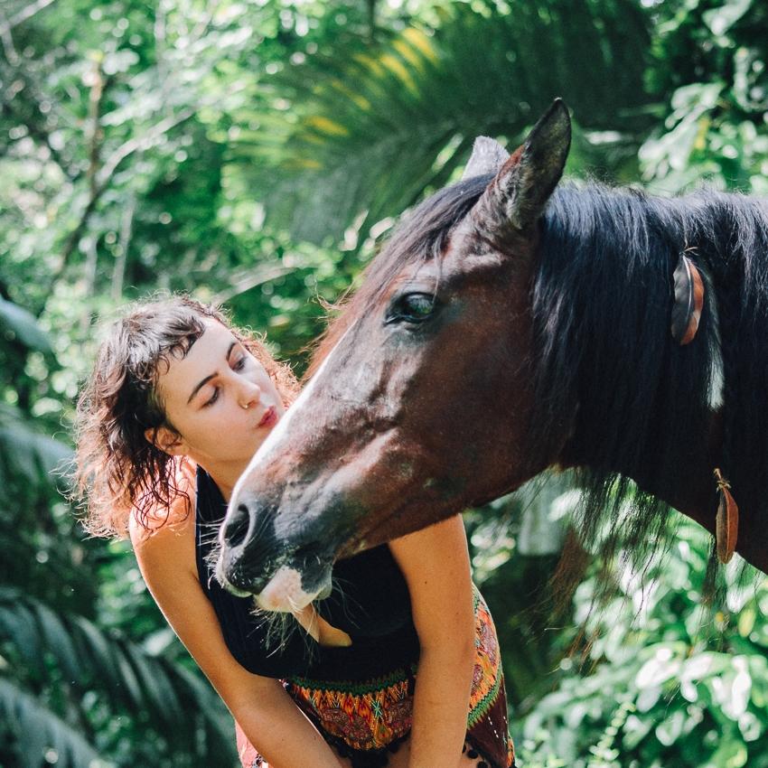horse-kiss.jpg