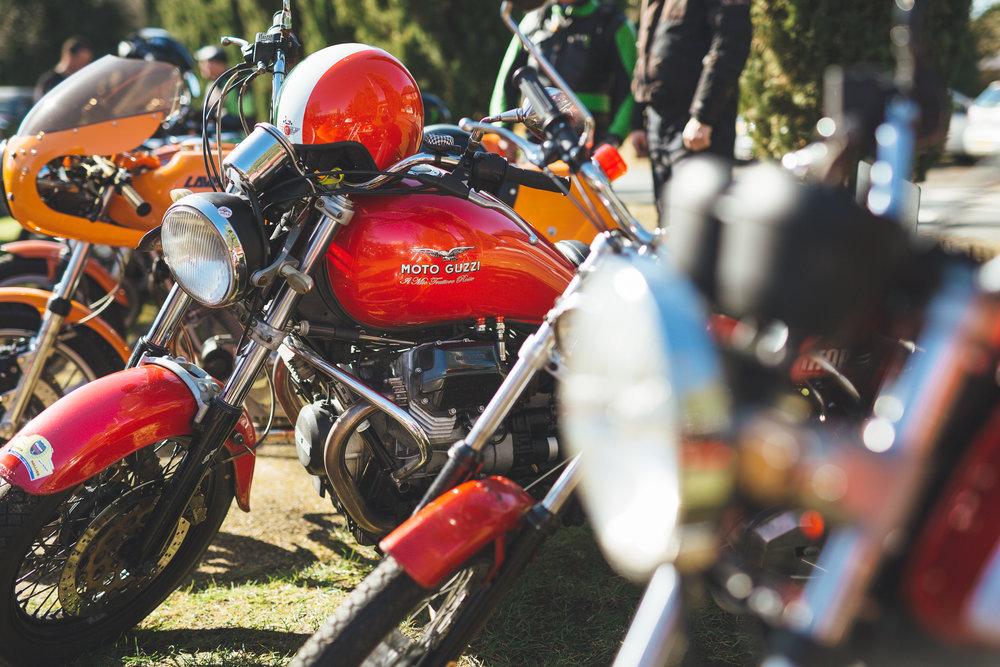 magazine_20160325_piazza16_P_piazza bikes for site__JAD0021.jpg