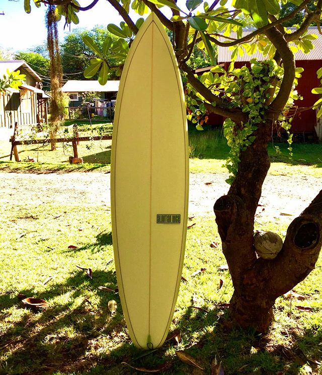 "7'2"" V6 Single Fin for Peter Ross in Kauai Nei. 13.15"" N X 20.375"" WP X 14.25"" T X 3.0"" thick. Nose rocker @ 5.5""; tail rocker @ 2.2"" @usblanks 77A Superblue, Natural ¡Rawson! rocker. Unstinting tinting by @watermansguild (G-meter sold separately)"